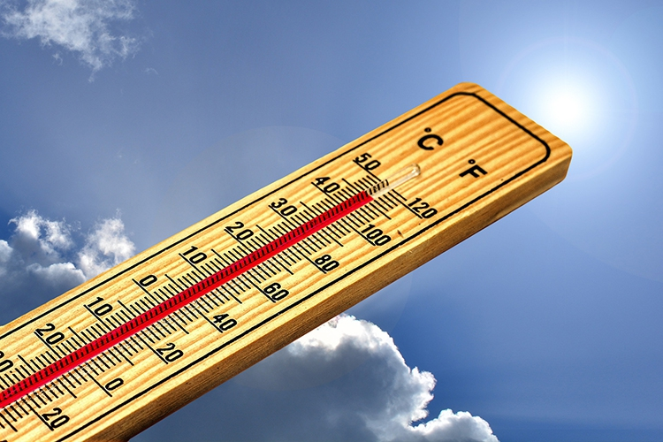 Hoe bereidt ú zich voor op de warmste zomer ooit? (5 nuttige tips!)
